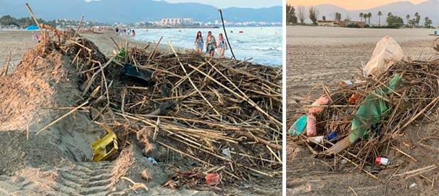 Begoña Carrasco, insta a la alcaldesa Amparo Marco a retirar las montañas de basura en la orilla de la playa y a actuar contra las plagas de mosquitos.