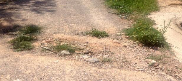 Miralles se ha hecho eco del malestar y las quejas de los vecinos de L' Alcora por la falta de mantenimiento y adecuación de los caminos rurales del término municipal.