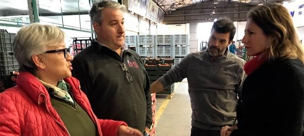 """Carrasco: """"Estamos ante una instalación de propiedad municipal desatendida sin recibir ninguna inversión desde casi hace 4 años."""""""