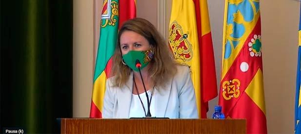 """Carrasco: """"La socialista Marco tampoco aclara si nos va a costar dinero a los castellonenses indemnizar a la empresa concesionaria de las cámaras por este abuso que perjudica a los castellonenses"""""""