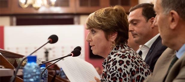 """Elena Vicente-Ruiz, diputada provincial del PP, considera que """"no podemos perder ni un día más sin habilitar acciones excepcionales que garanticen servicio a las familias"""""""