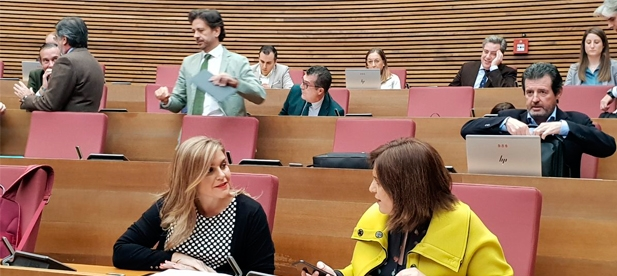 La Síndica pide que el resto de grupos se sumen y recuerda que también planteó un plan a Puig sobre la emergencia sanitaria y social que incluía la reducción del 30% de altos cargos