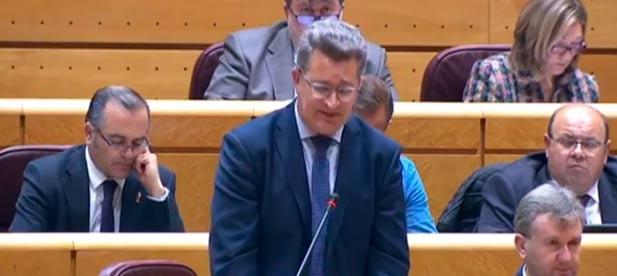 El senador Vicente Martínez exige a la ministra de Transición Ecológica que actúe con rapidez para que las playas estén listas ante la llegada de turistas en Pascua