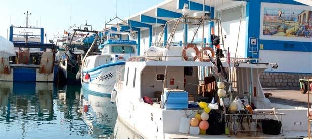 """Guillamón ha anunciado que el PP elevará al próximo pleno una declaración institucional para pedir al equipo de gobierno que """"defienda las reivindicaciones del sector pesquero"""""""