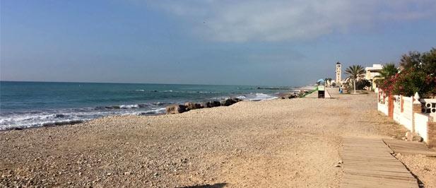 """El PP de Nules pide al alcalde  de la localidad que aproveche la visita de Pedro Sánchez """"para plantear al responsable la necesidad de invertir en la defensa de la playa de Nules""""."""