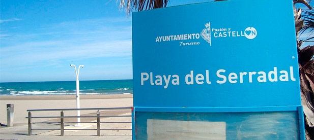 """Guillamón: """"A la situación concreta de esta playa se suman las deficiencias que presentan este verano otras zonas de nuestra costa, como el Parc Litoral"""""""