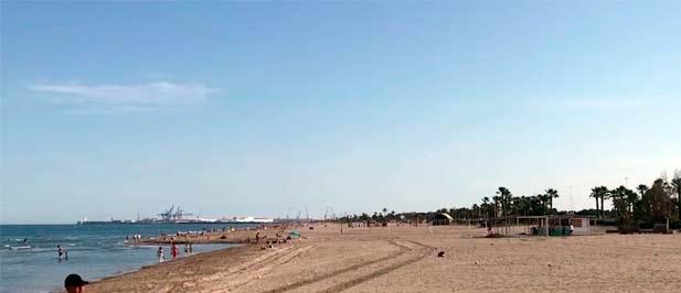 """Carrasco: """"Mientras unos dicen que hay que proteger los periodos de nidificación en la playa del Serradal del chorlitejo patinegro, otros dan la orden para llevarse la arena, precisamente de esta playa donde está anidando esta especie protegida"""""""