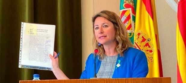 """Carrasco: """"La alcaldesa Amparo Marco fue incapaz de dar una contestación en sesión plenaria ayer por la mañana"""