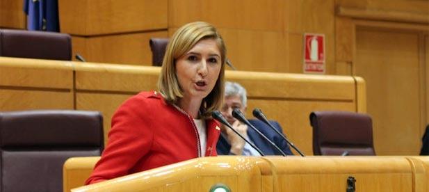 """Pradas: """"El Partido Popular es el único partido que defendemos de forma clara la unidad de España, el respeto y la libertad"""""""