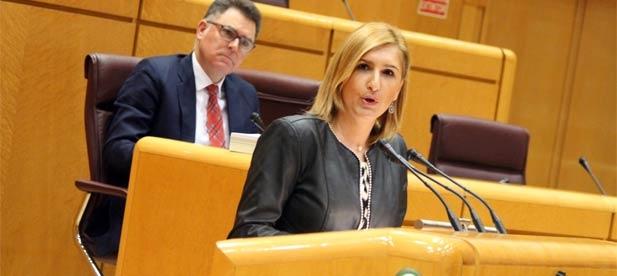 Los populares de Castellón lamentan que el PSOE haya votado en contra de la propuesta del PP para que el Gobierno pague el IVA pendiente a las comunidades y Ayuntamientos
