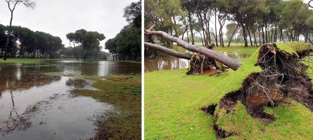 """Carrasco: """"Estamos viendo los efectos devastadores que ha dejado el último temporal marítimo y, sin embargo, no hay ningún tipo de avance al respecto. Reclamamos celeridad en materia de prevención"""""""